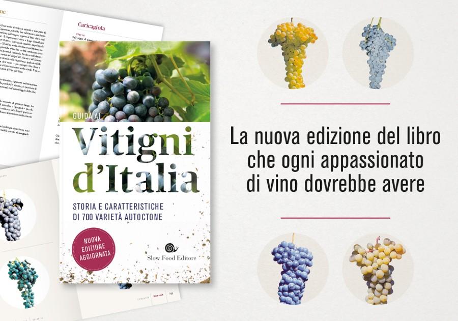 Vitigni d'Italia - nuova edizione