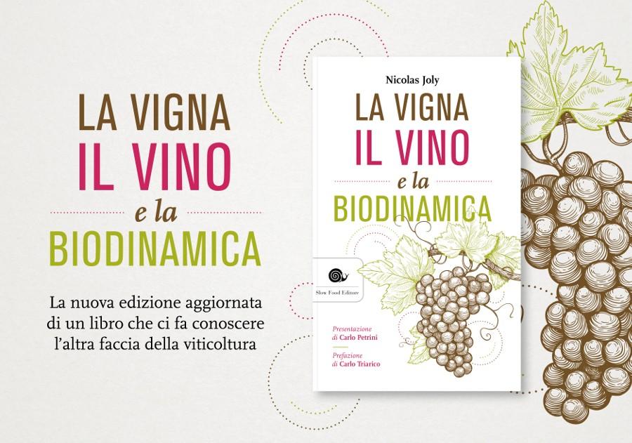 La vigna, il vino e la biodinamica